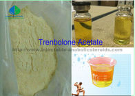 Porcellana Purity 99.99% Tren Anabolic Steroid  Yellow Injection Powder Tren A for  Muscle Growth Cuttimg Cycle fabbrica